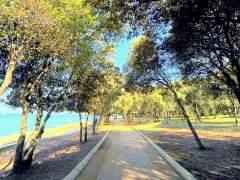 Miris mora i svježina šuma