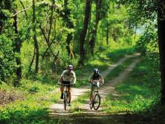 Siguran biciklizam